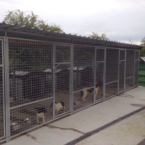Kingspan Dog Kennels